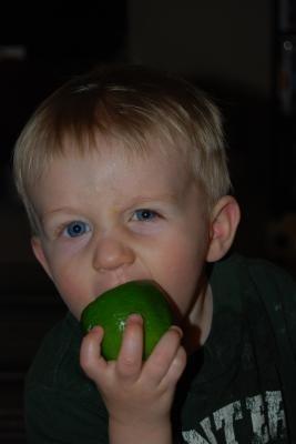 erik's lime pic 1